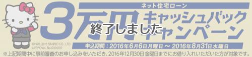 campaign_mizuho_1_end